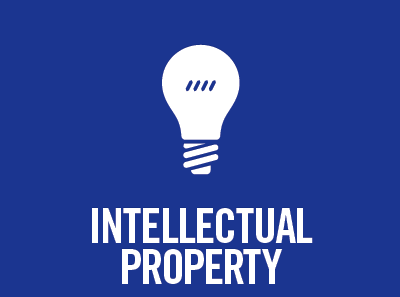 Protection of Intellectual Property Rights